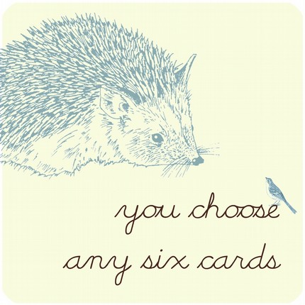 hedgehog cards